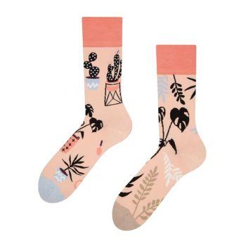 Good Mood Sokken Binnen Planten